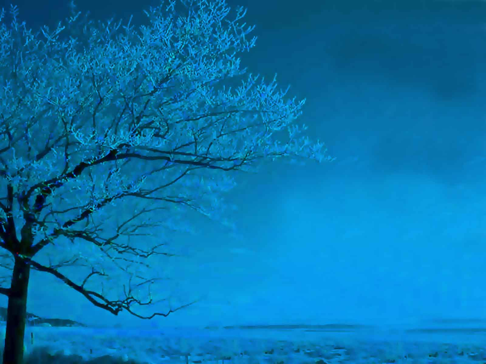 Tree In Light Blue Theme  One Of Our Nature Theme  For PowerPoint